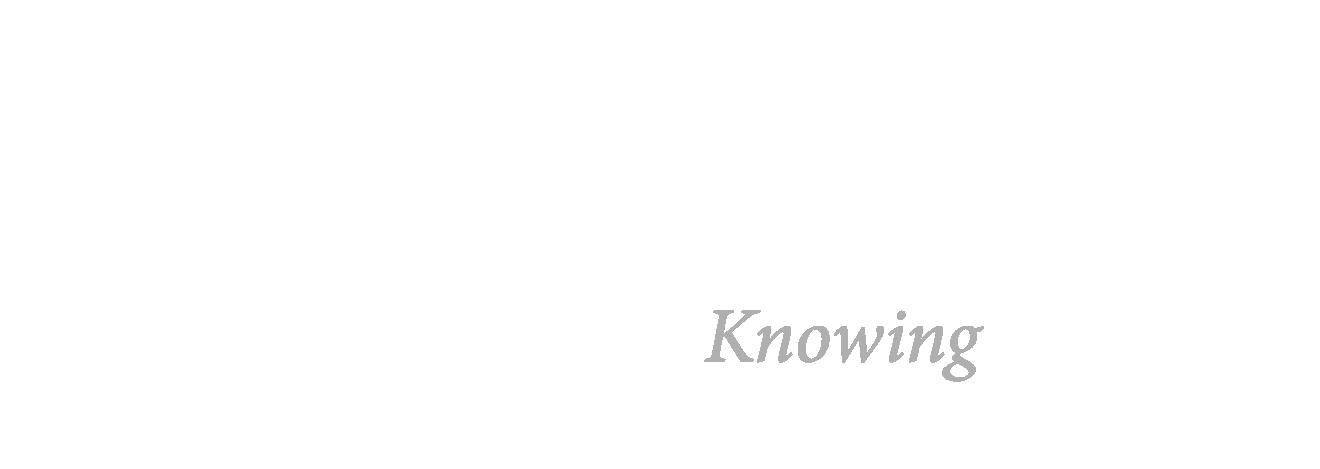 Icare mHOME